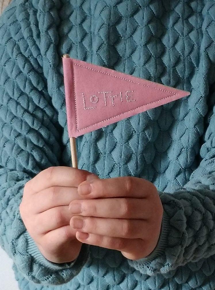 Custom mini pennant flag
